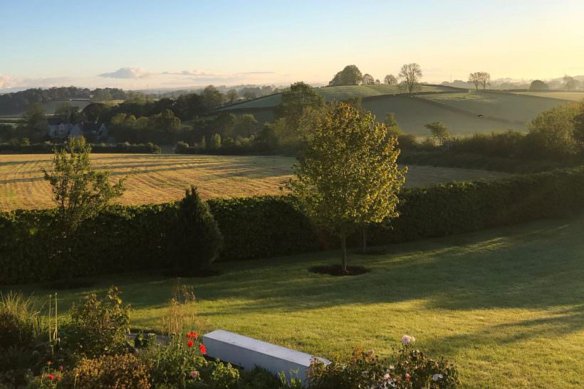 Wee Buns Tyrone Countryside