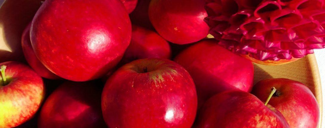 Dahlias and Apples