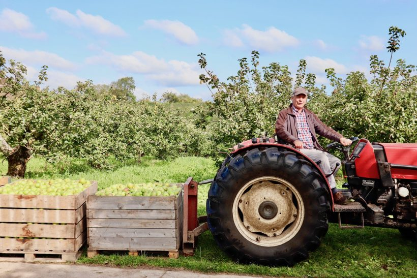 Armagh Orchard