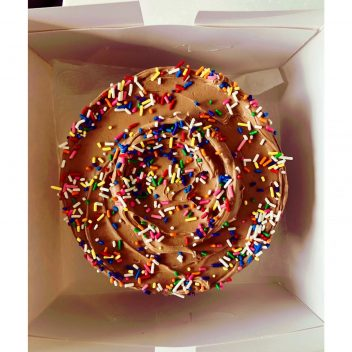 Chocolate Cake With Sprinkles