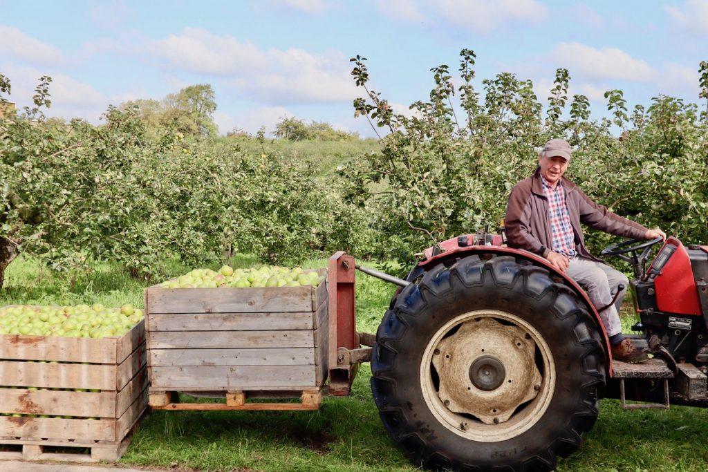 Collegeland Orchard