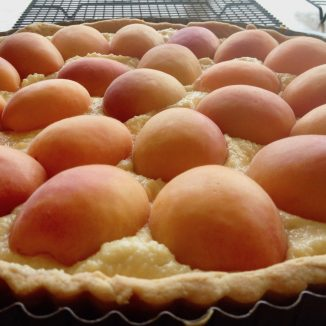 apricot &almond tart