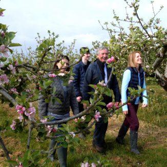 apple blossom tour